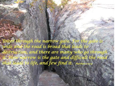 narrow gate.001
