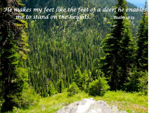 Psalm 18.33.001