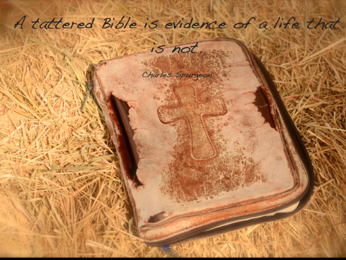 tattered Bible.002